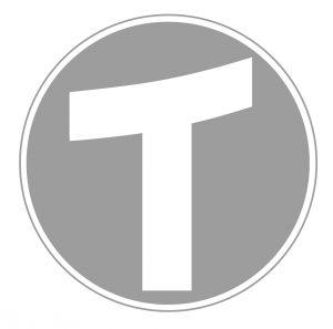 logo_twerk_grey